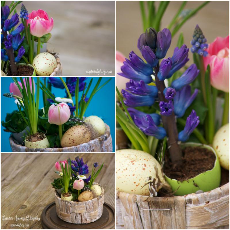 Easter Living Display.jpg