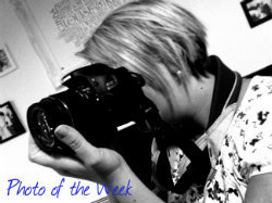 PhotooftheWeekBadge_zps01f12a4f.jpg