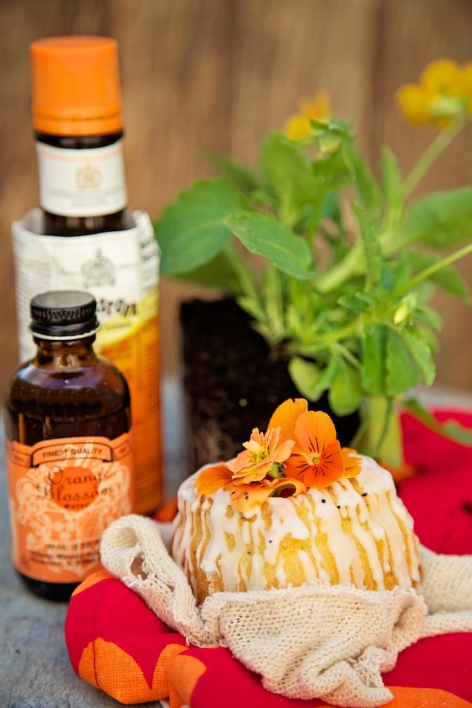 orange blossom & poppy seed cake.jpg