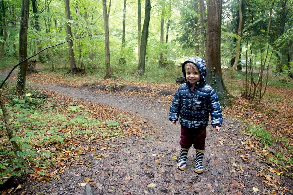 Ollie in the woods.jpg
