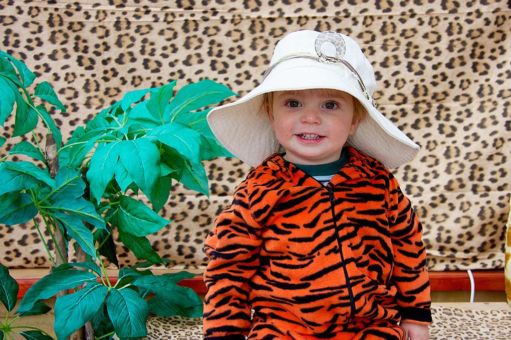Safari-Christmas.jpg