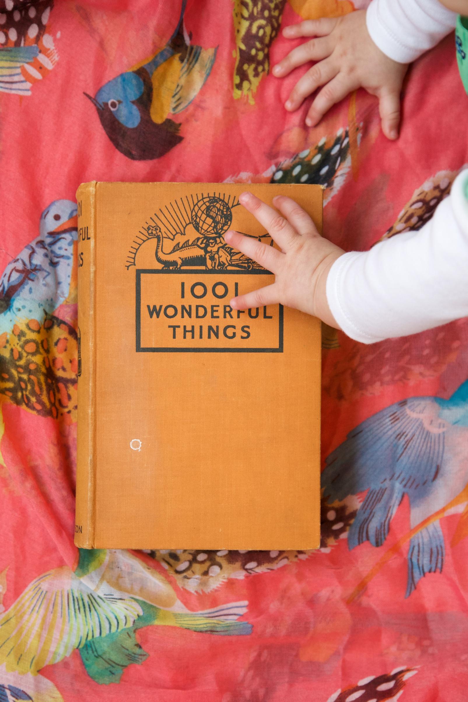 1001 Wonderful Things