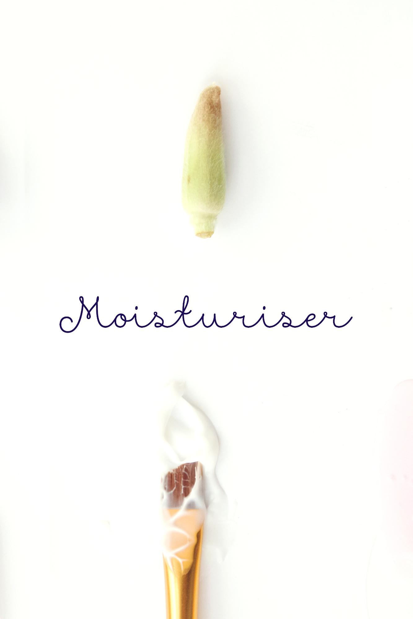 How much moisturiser to use.jpg