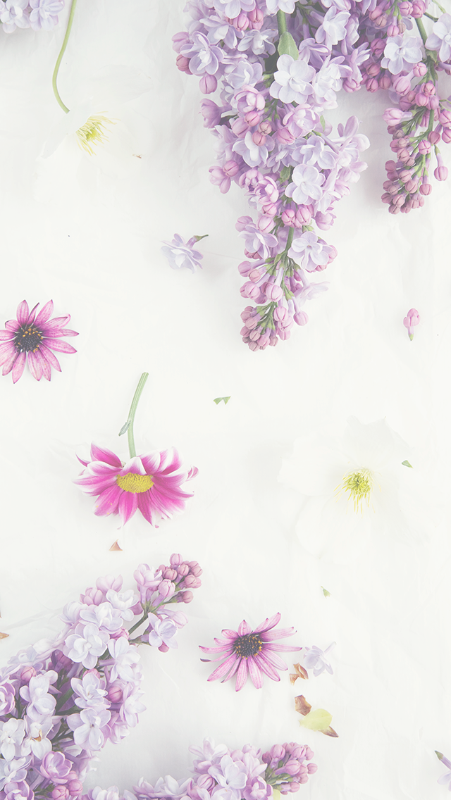 Free Floral Phone Wallpapers Spring Collection Bibs 2014