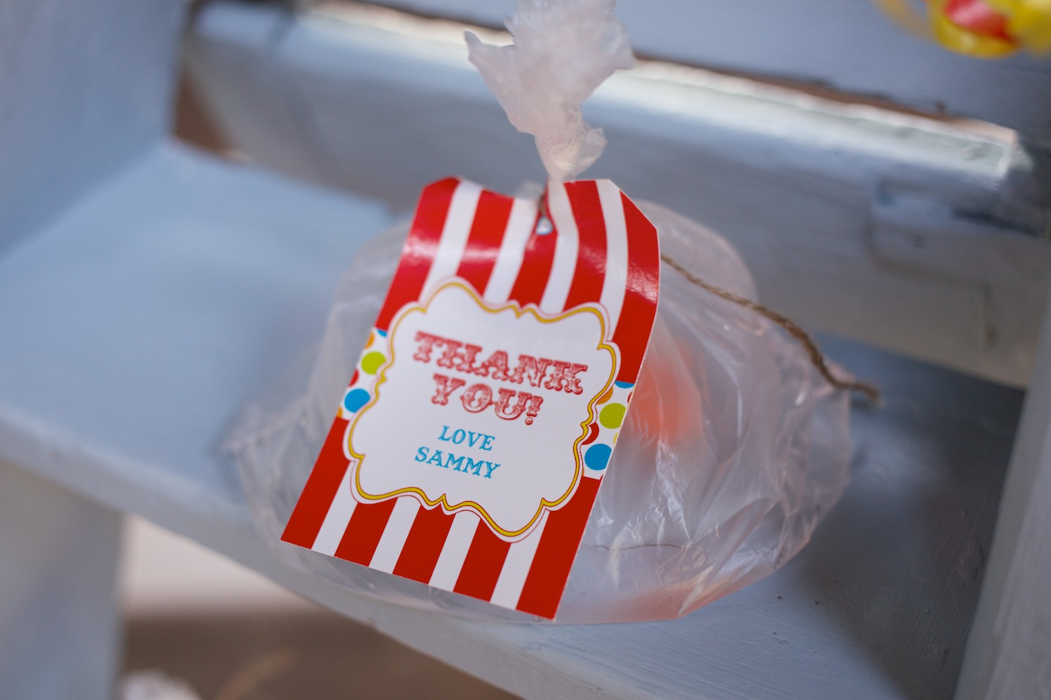 Circus Party Favours