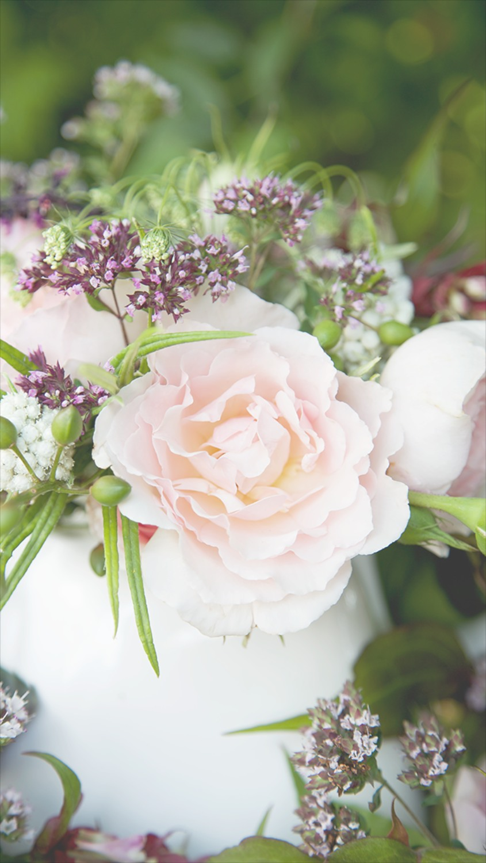 rose floral phone wallpaper