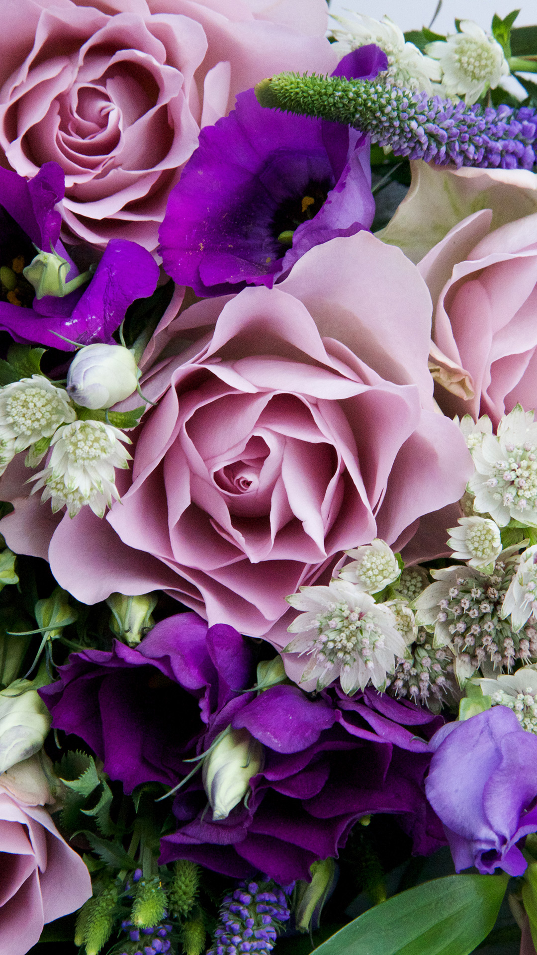 Mother S Day Flowers And Free Phone Wallpapers Featuring Debenhams Capture By Lucy Amazing free hd flower wallpapers collection. capture by lucy