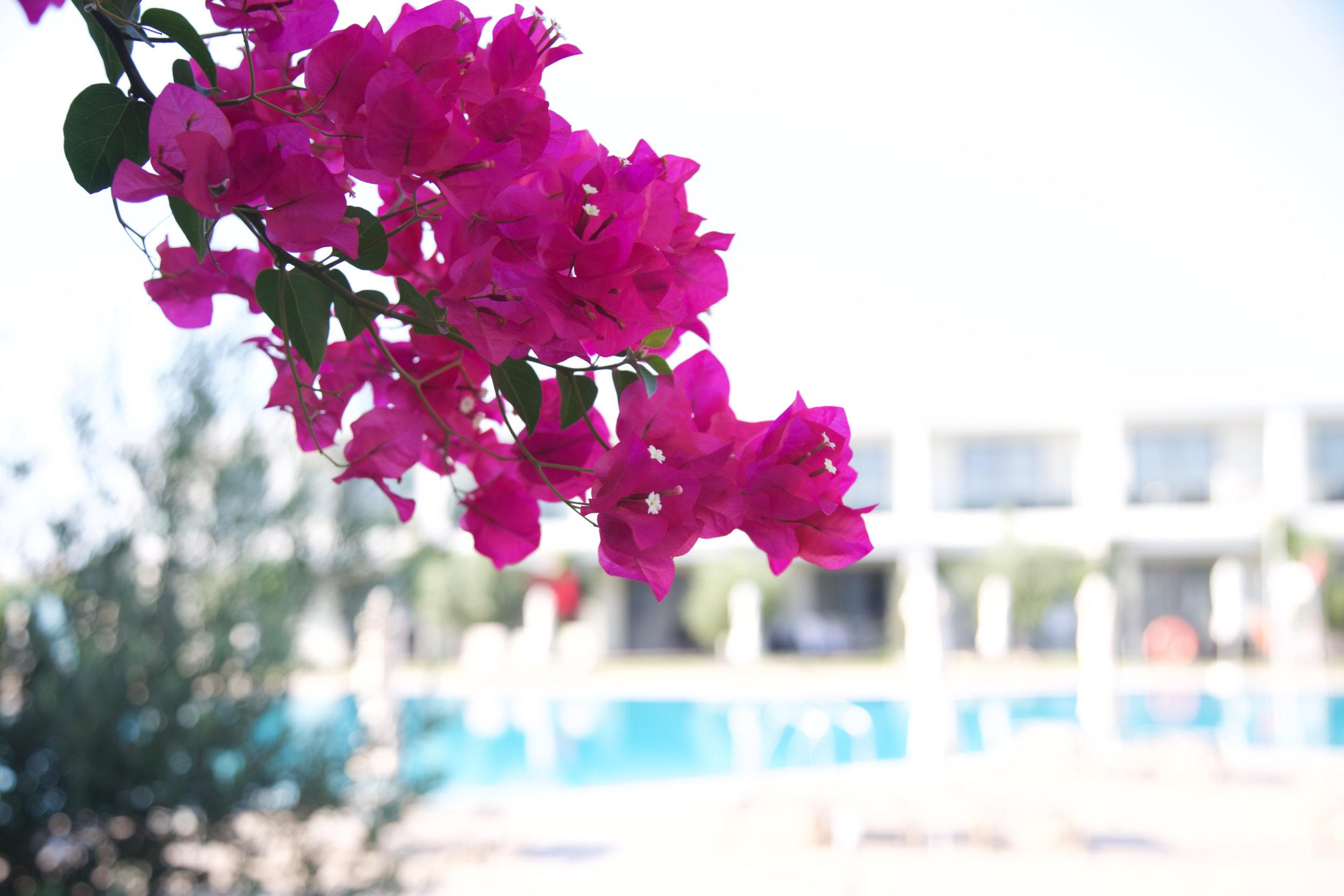 mark warner levante beach resort 99.jpg