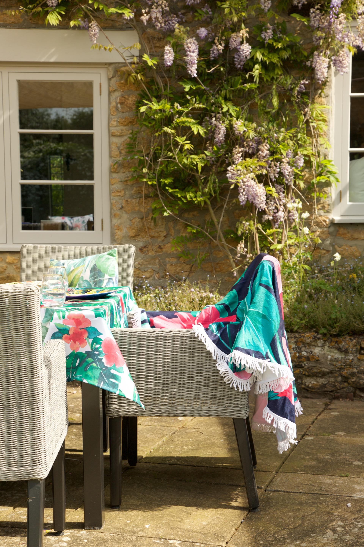 wisteria plant uk.jpg