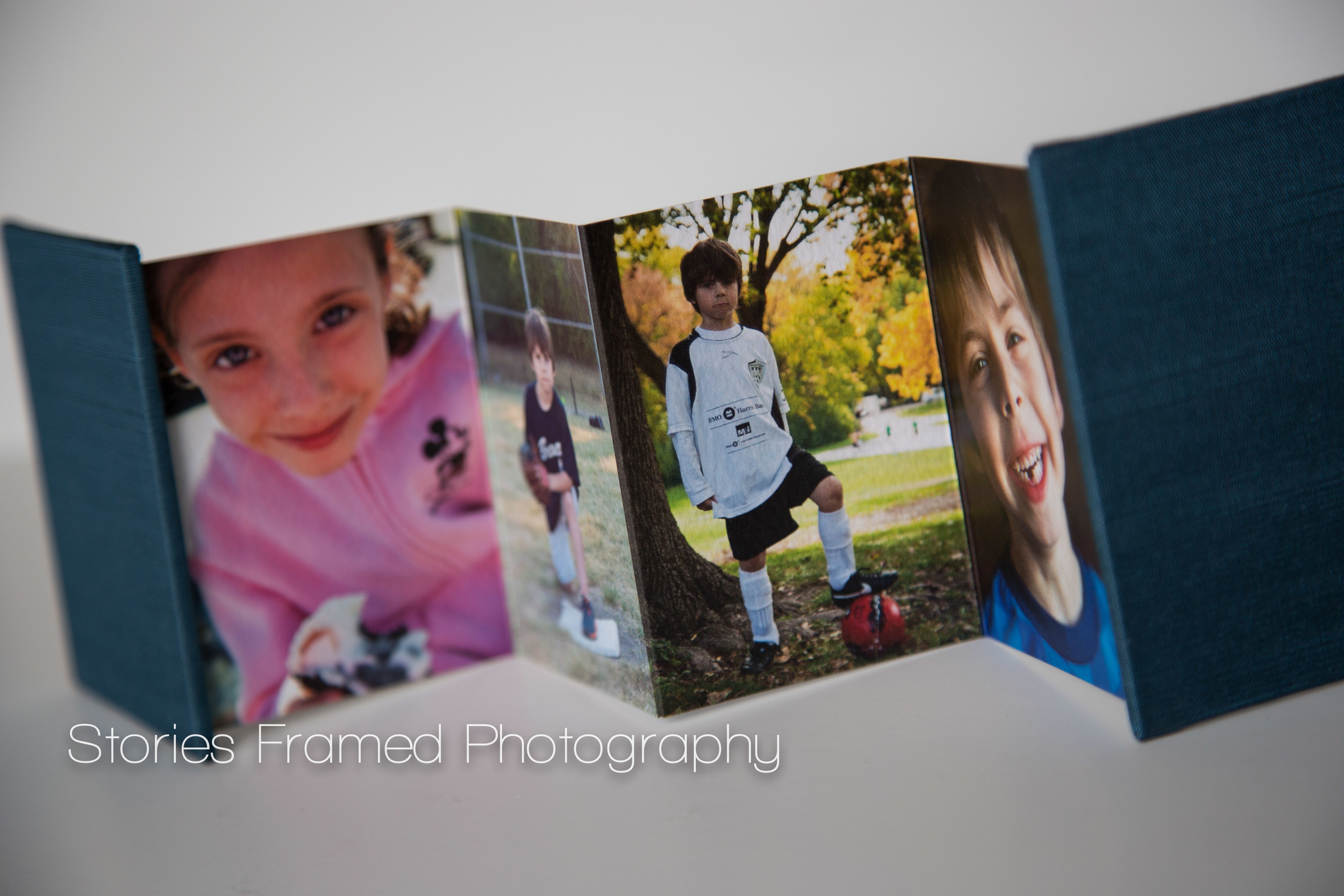 Shown: Mini Accordion Book with cover fabric in Sapphire.