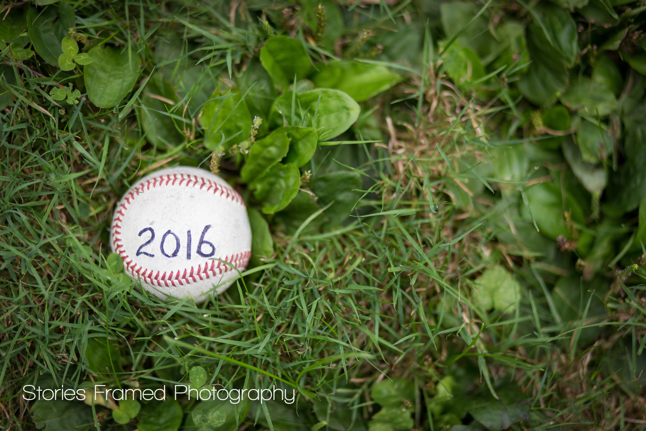Wauwatosa-Senior-Photography-Tosa-West-Jacob-baseball-class-of-2016