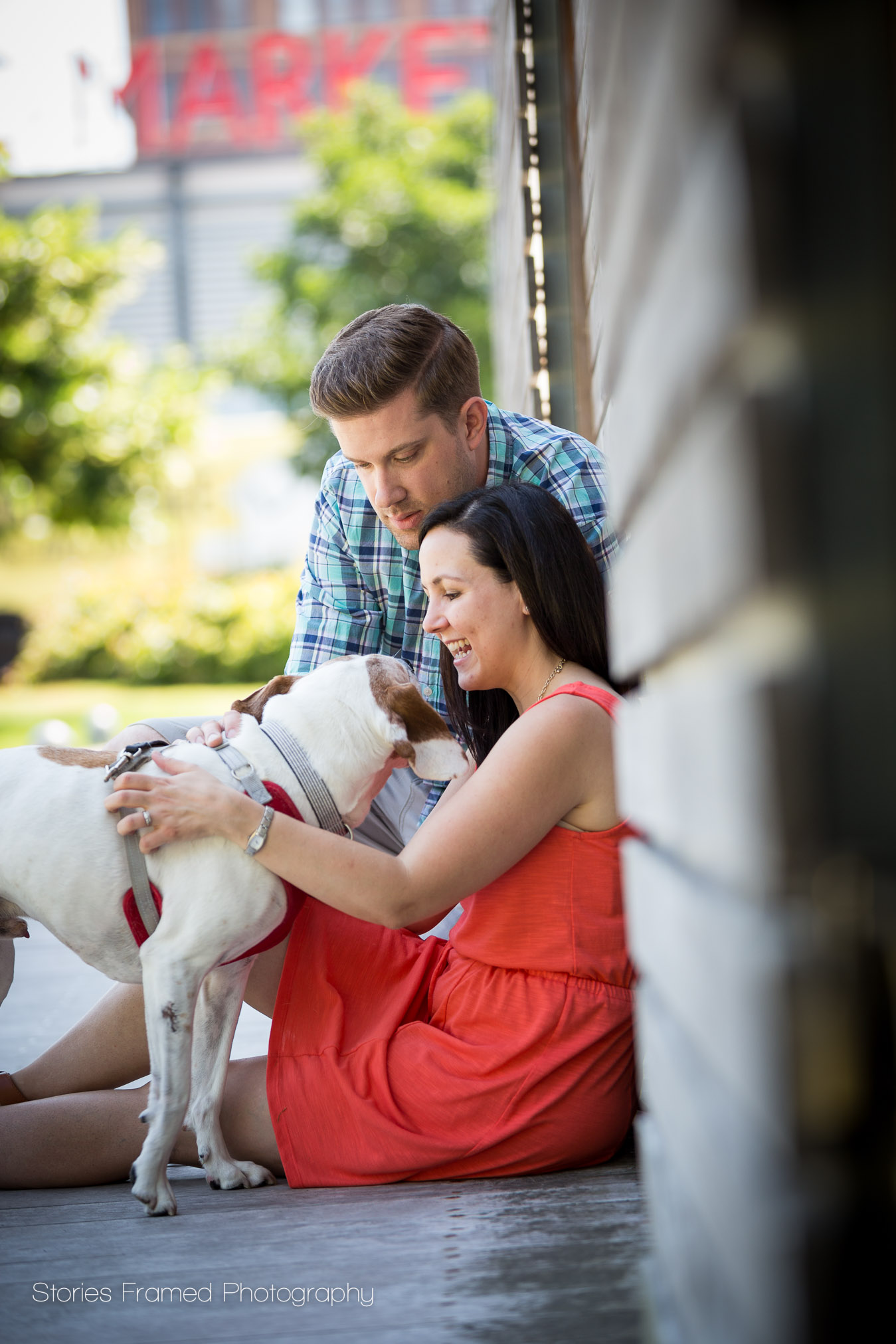 Meet Murphy the Dog Who Joined for Family Photos.
