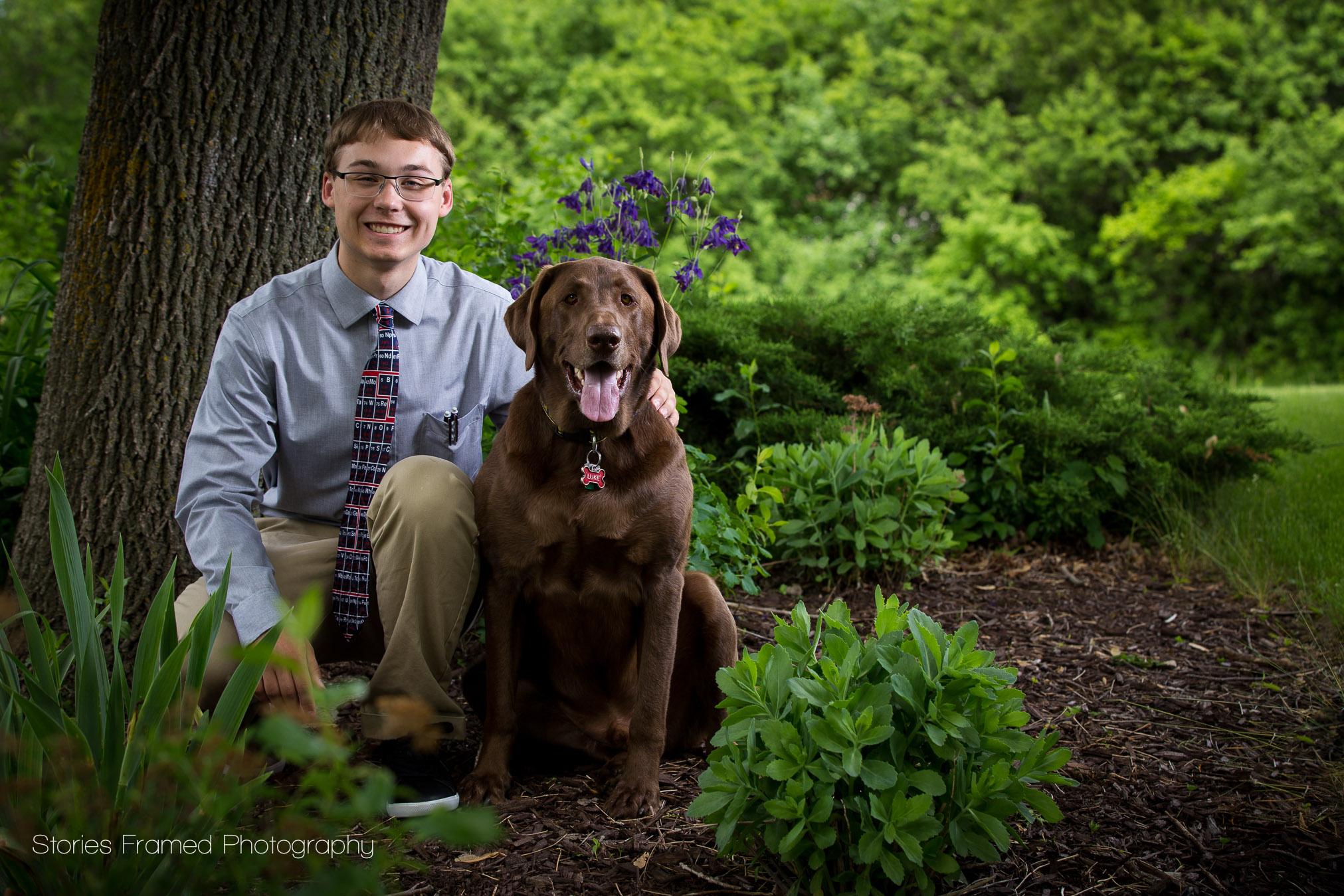 boy and his chocolate lab dog sitting outside