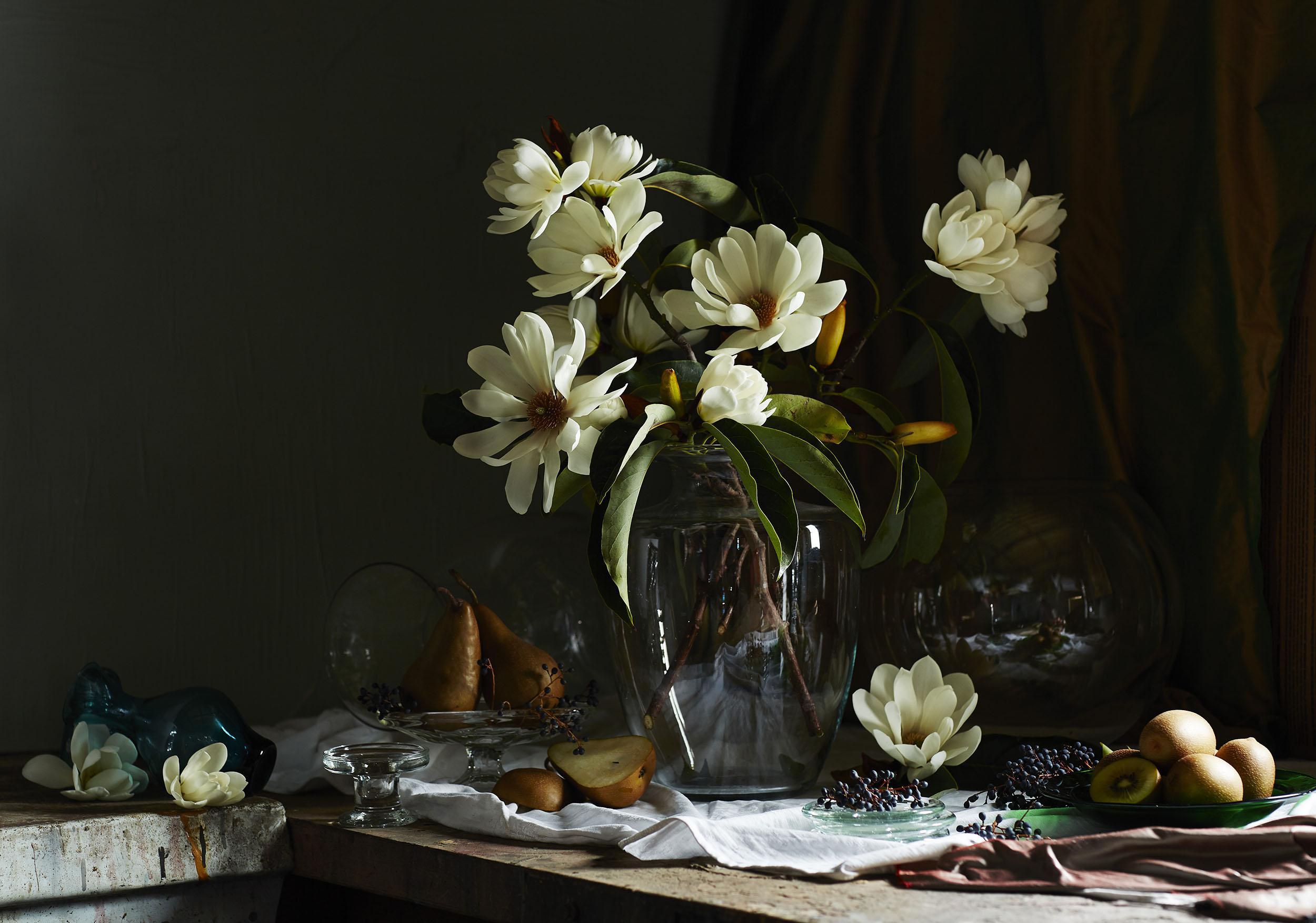 magnoliass.jpg