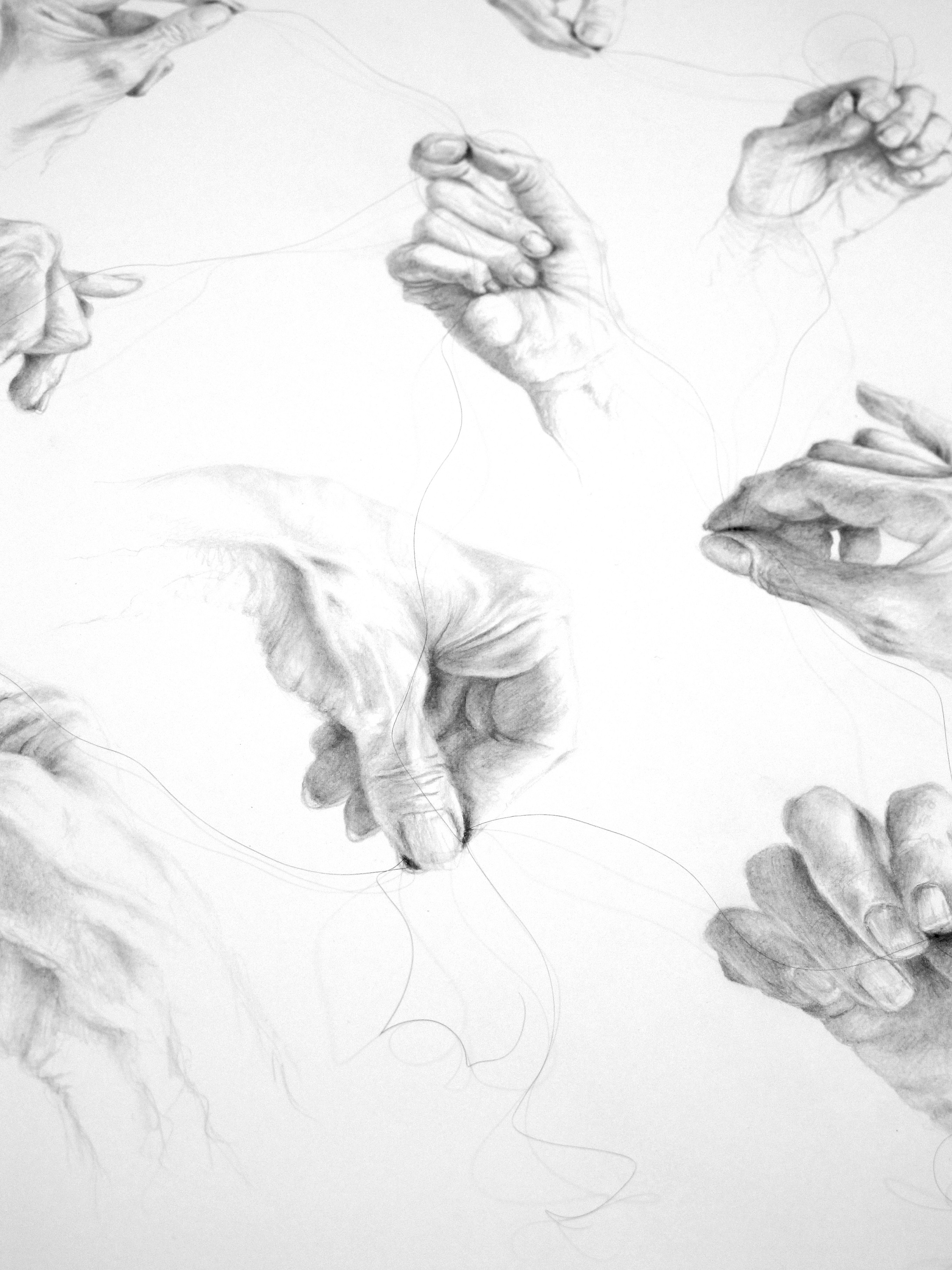 LaneJ_Untitled Co Operation_graphite and humanhair_76 x 56 cm DETAIL.jpg