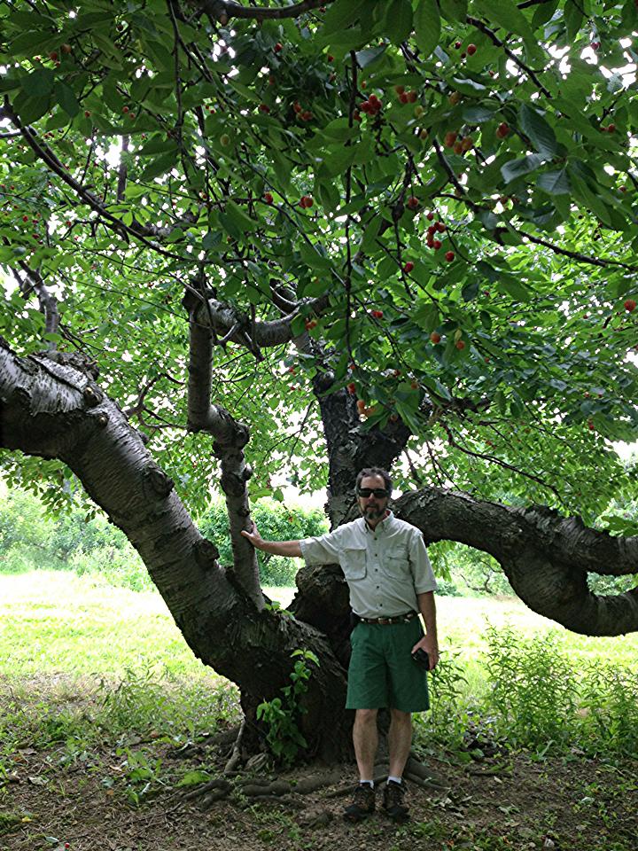 paul at tree.jpg