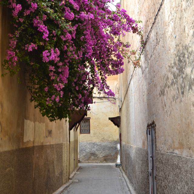 alleyways in fes