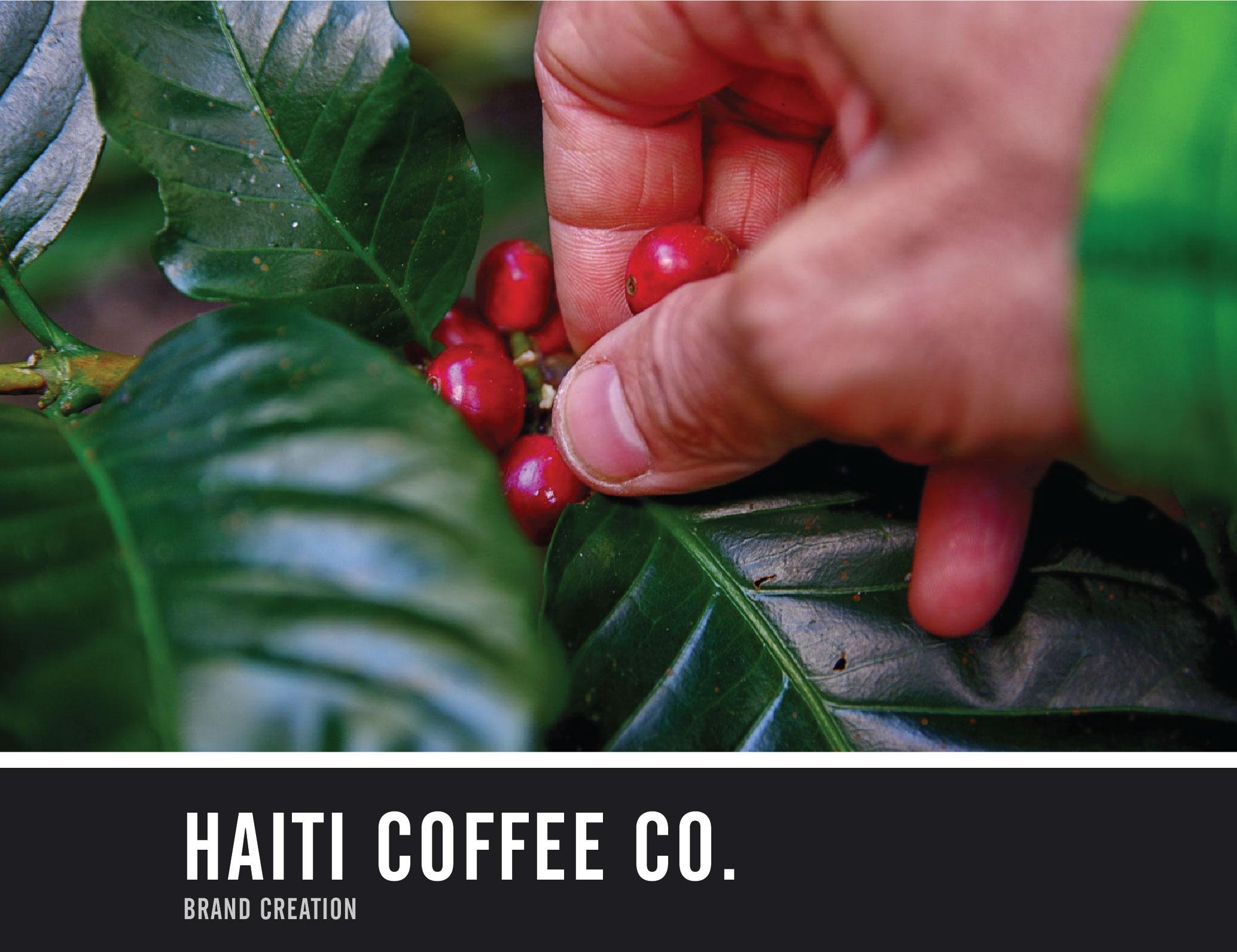 HaitiCoffeeCo_splashpg-01.jpg