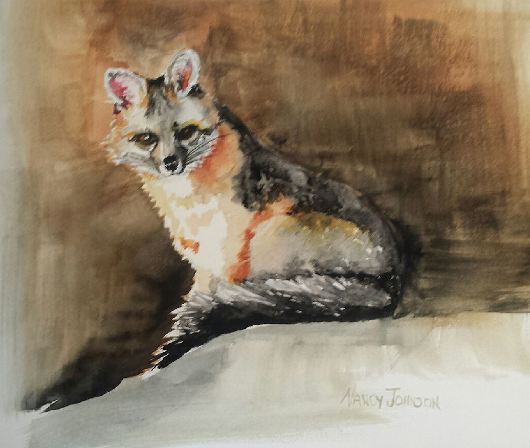 Nancy Johnson's Out Foxed
