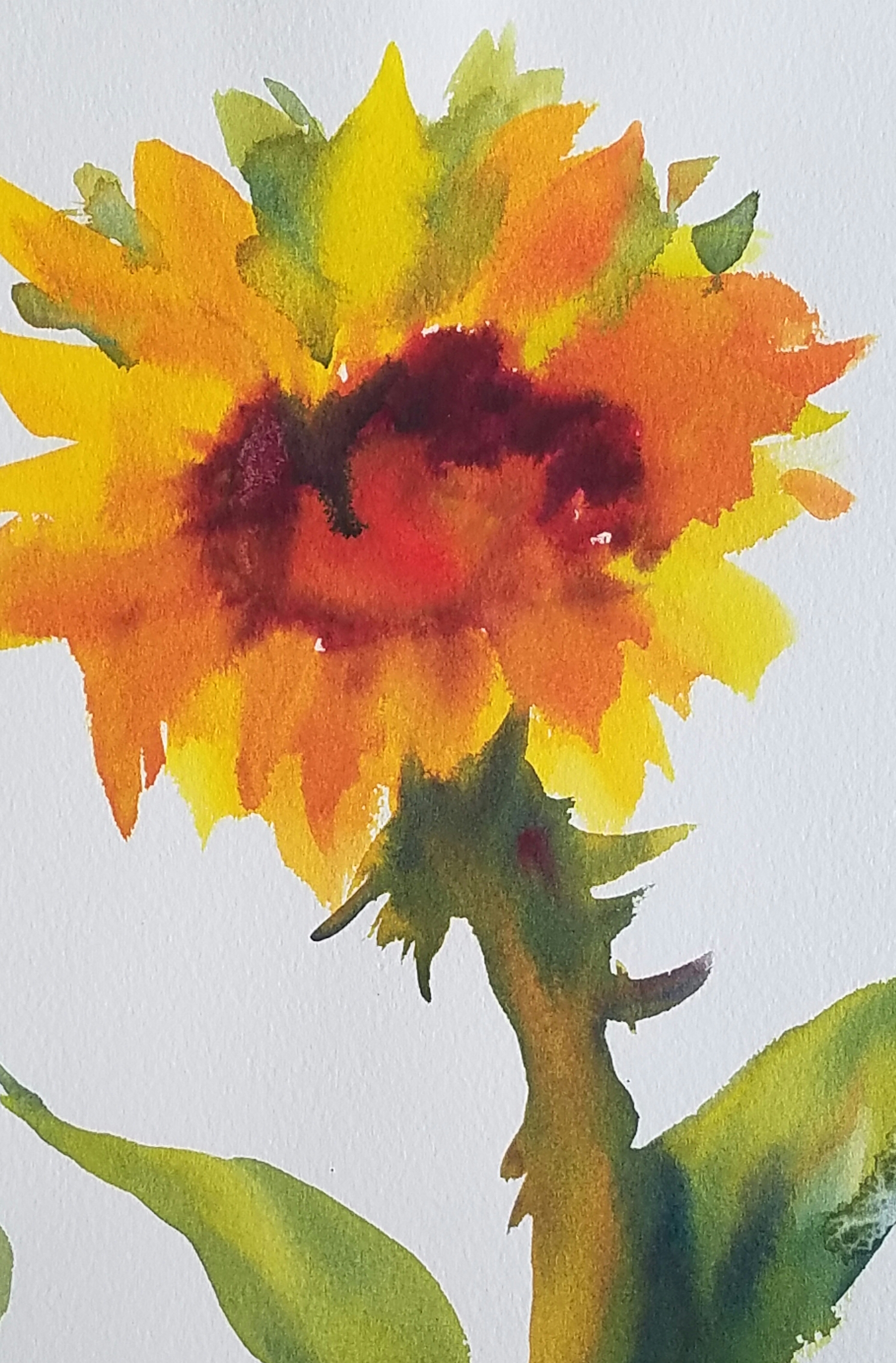 Pat Weaver's Sunflower