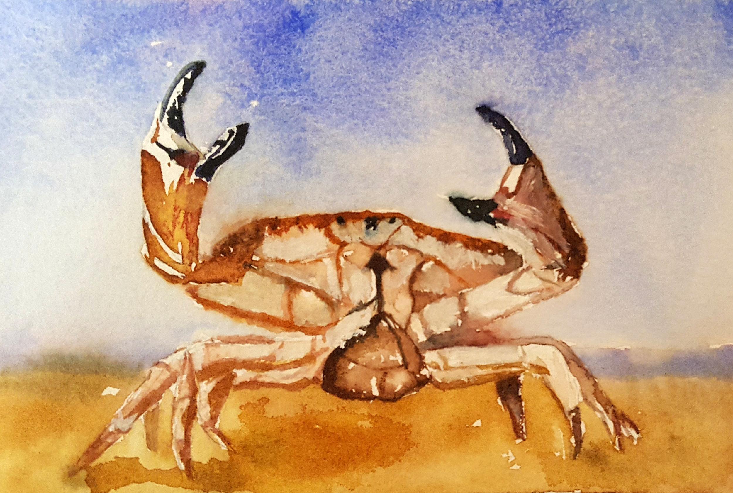 Heather Earnest's Crabbie