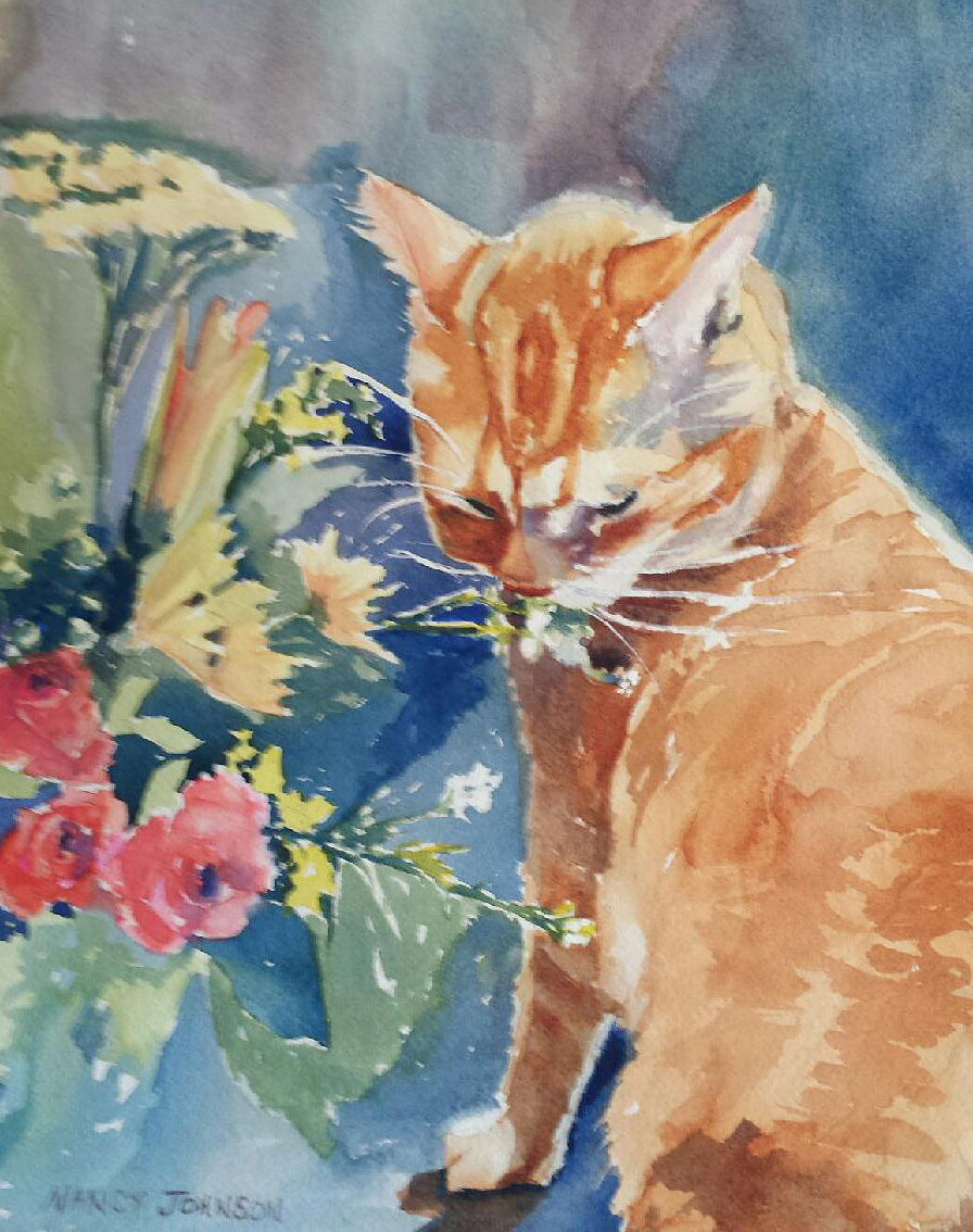 Nancy Johnson's Clarence loves flowers