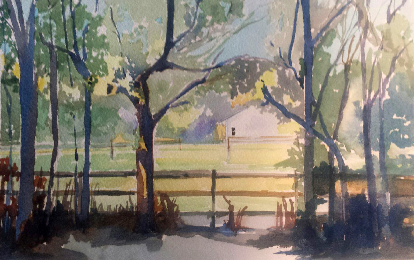Nancy Johnson's Lynn's View