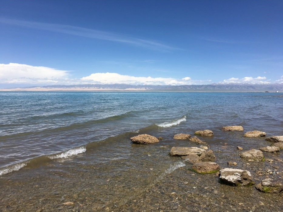 Large Lakeshore.jpg