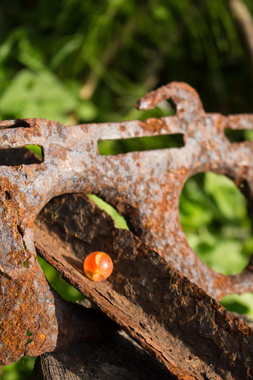 Cynydd sheela August  (3 of 5).jpg