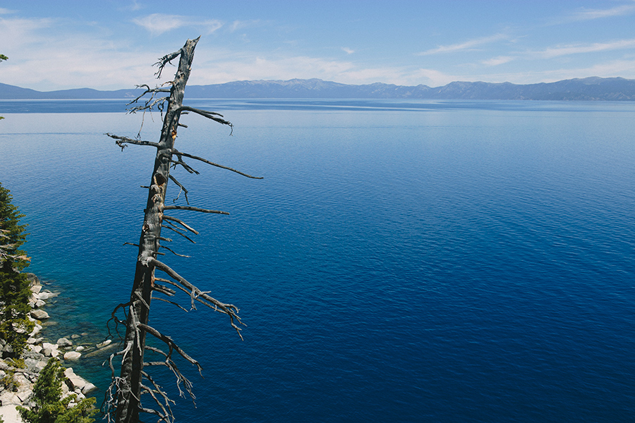 tahoe-cmichalik_37.jpg
