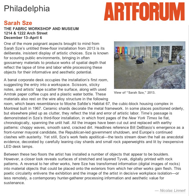 ArtForum_SarahSzeFabricWorkshop_040214.jpg