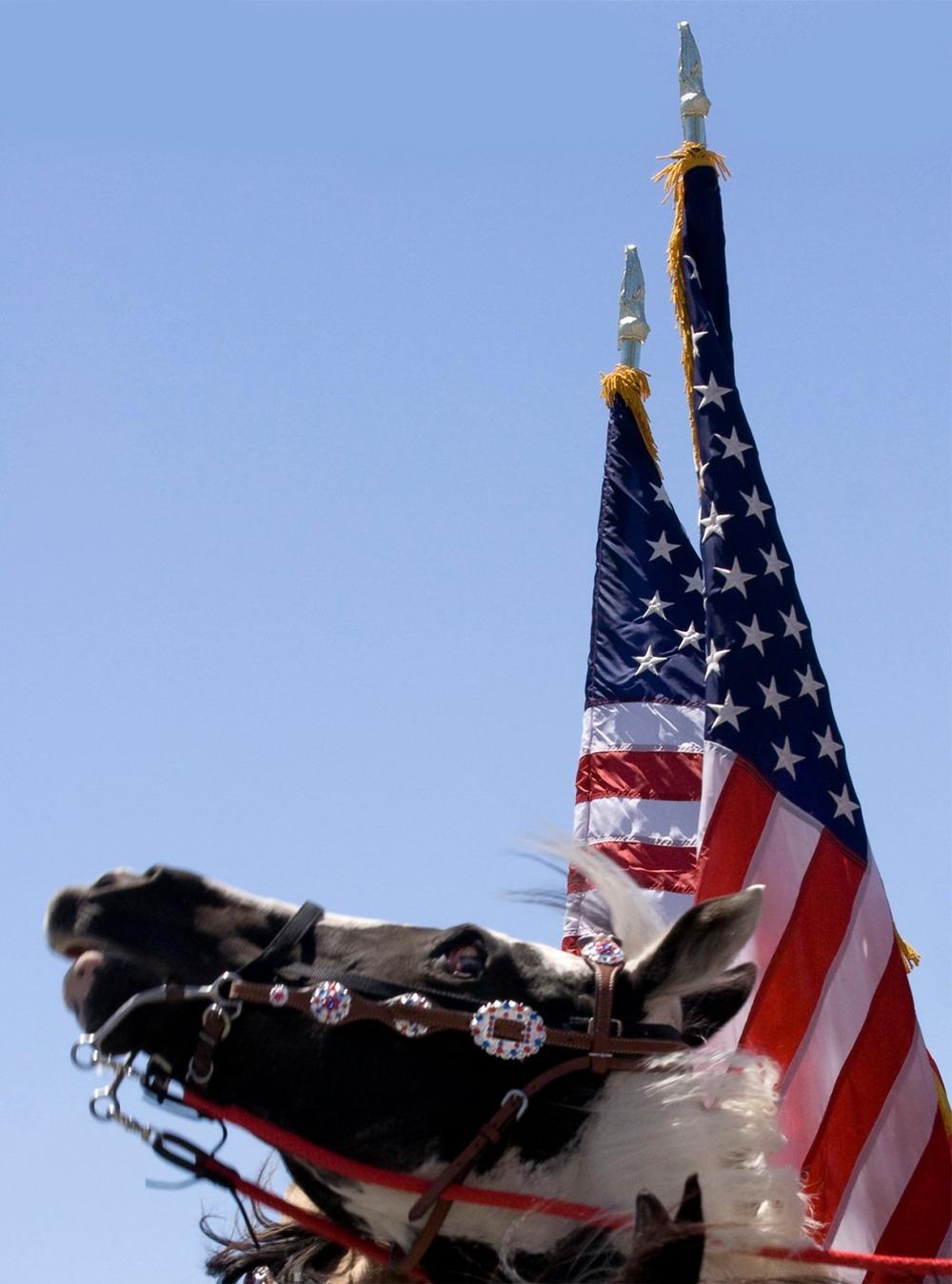 equinal+patriotism-troy+peterson.jpg