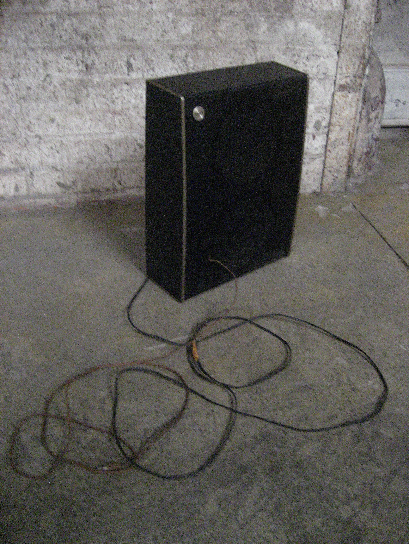Slender Black Speaker with Wire $15