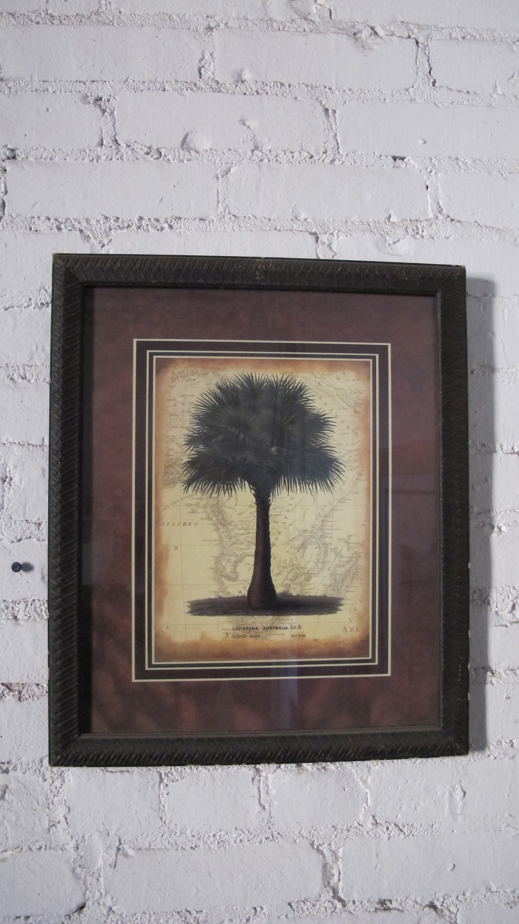 Framed Tree with border $60