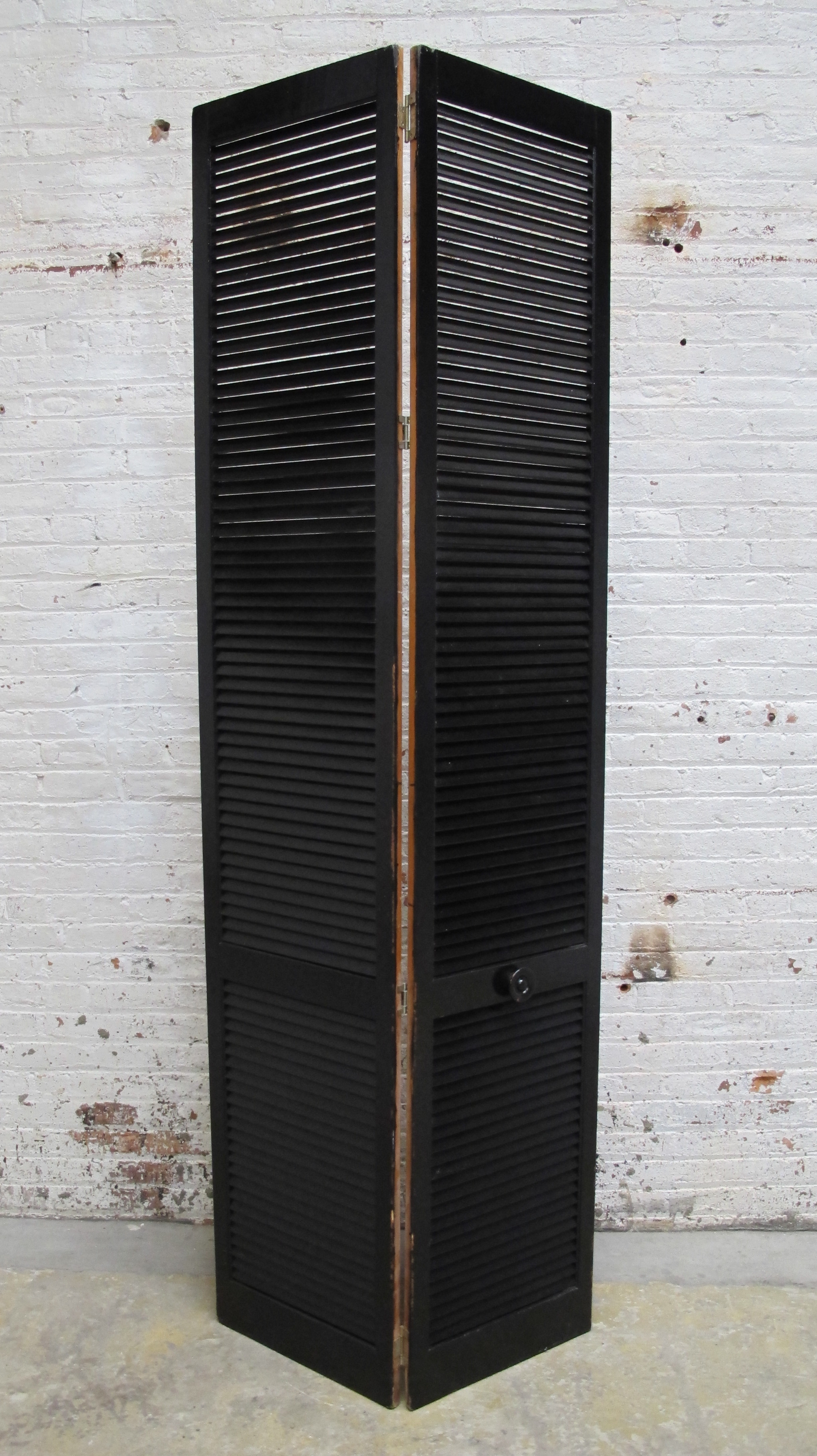 Black 2-panel Screen - front $75