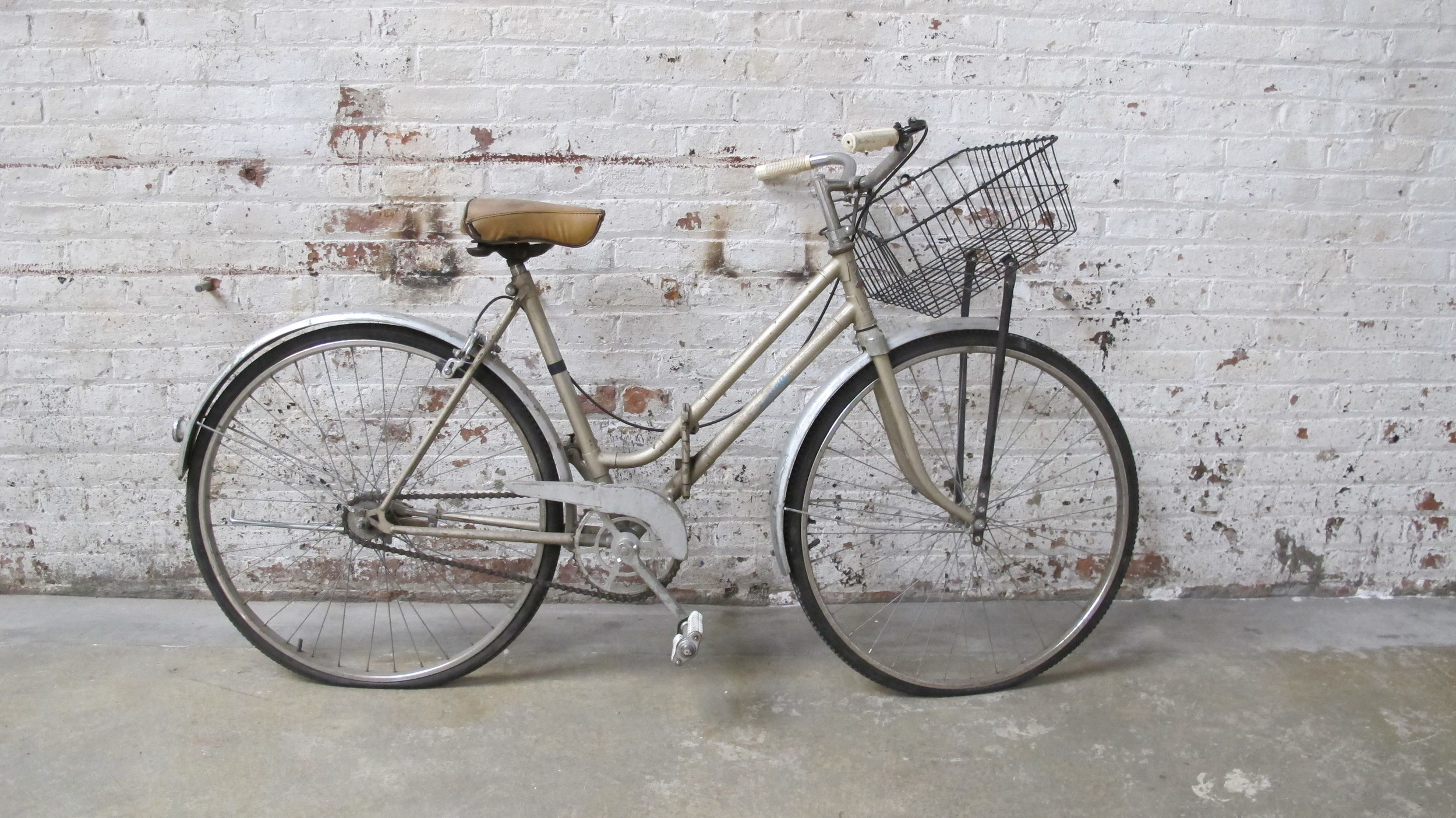 Bike with a Basket $75