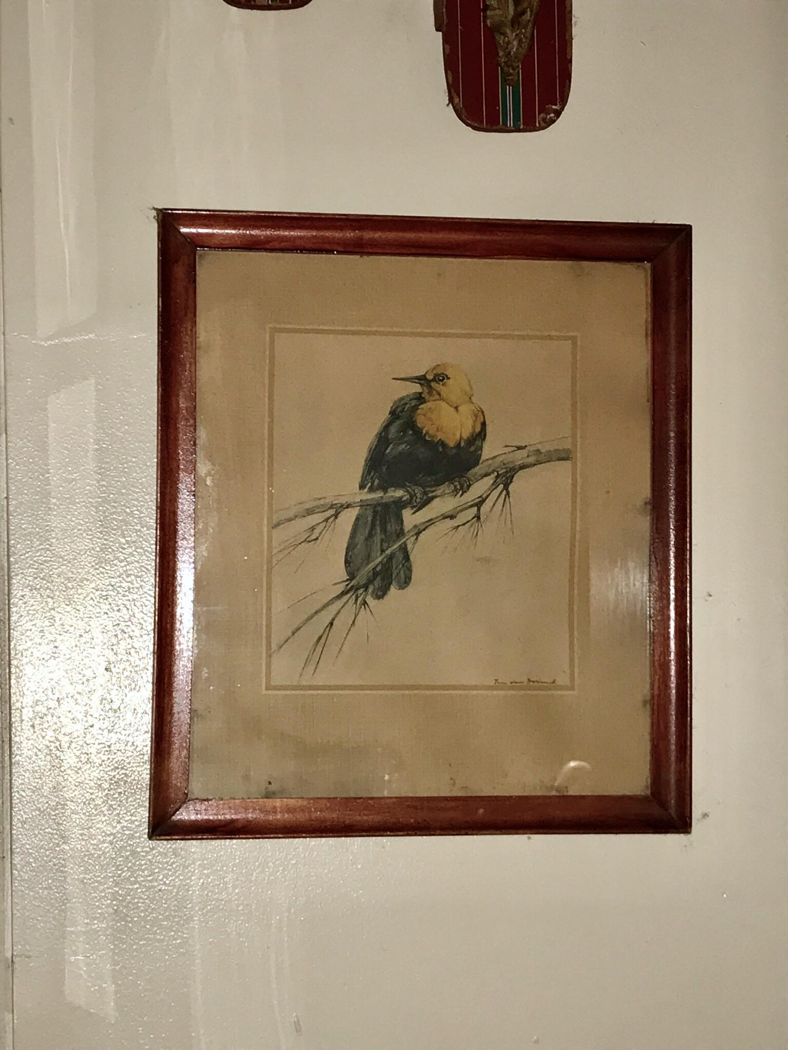 Framed Bird Drawing $60