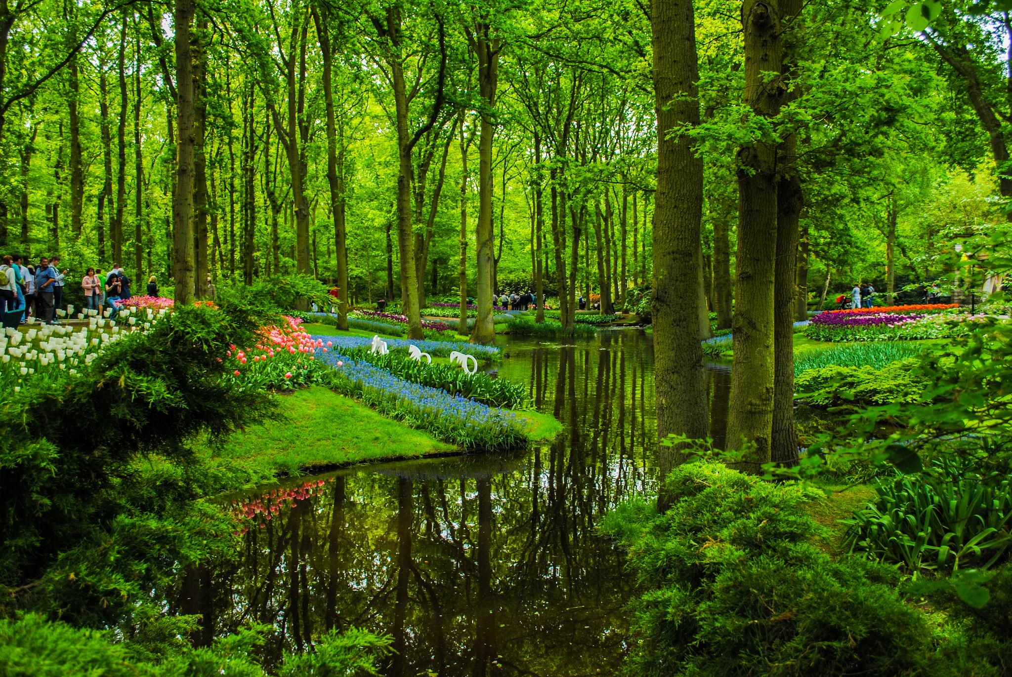 Guide to Visiting Amsterdam's Keukenhof Gardens