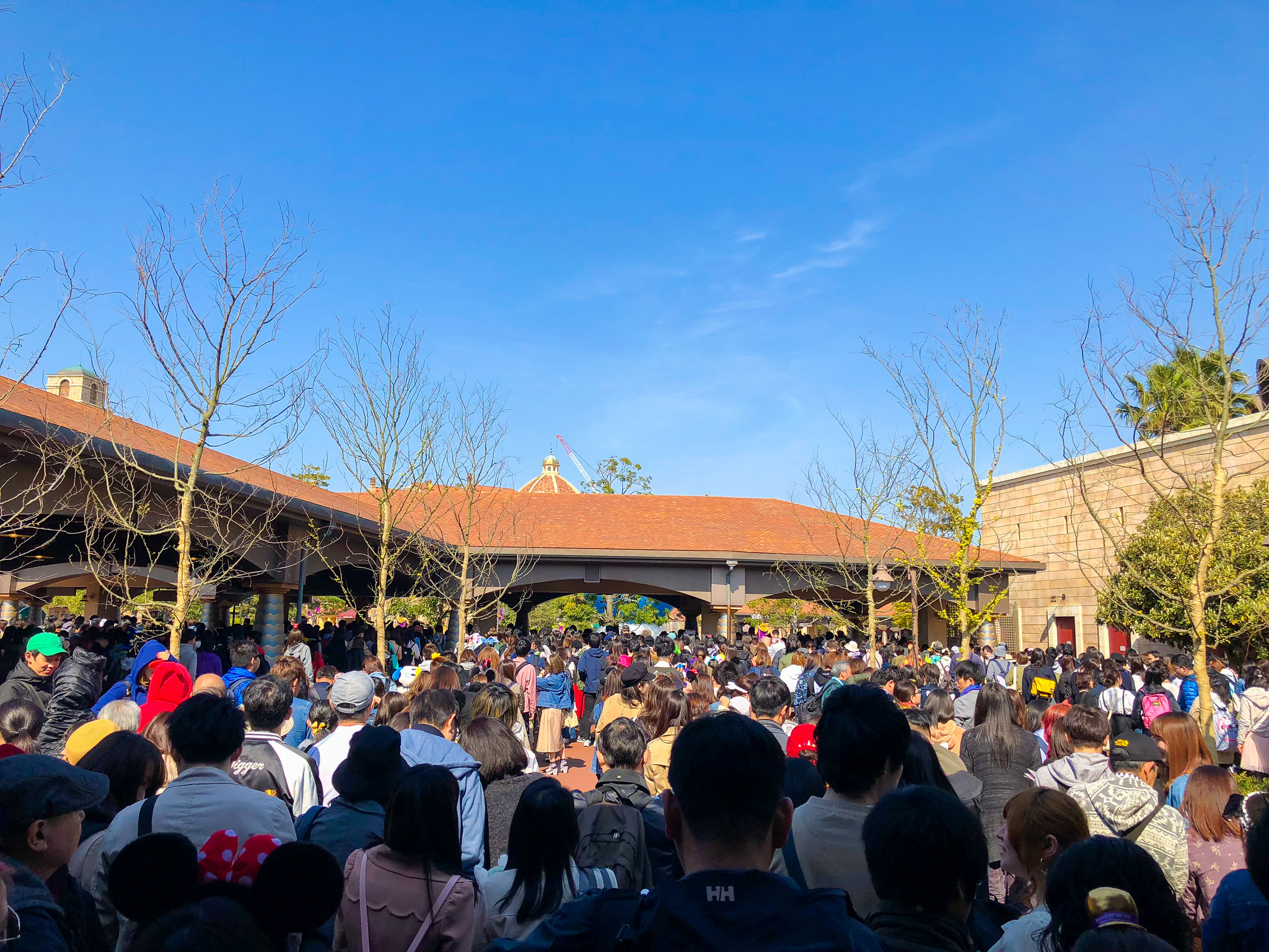 The Ultimate Guide to Your First Visit at Tokyo DisneySea