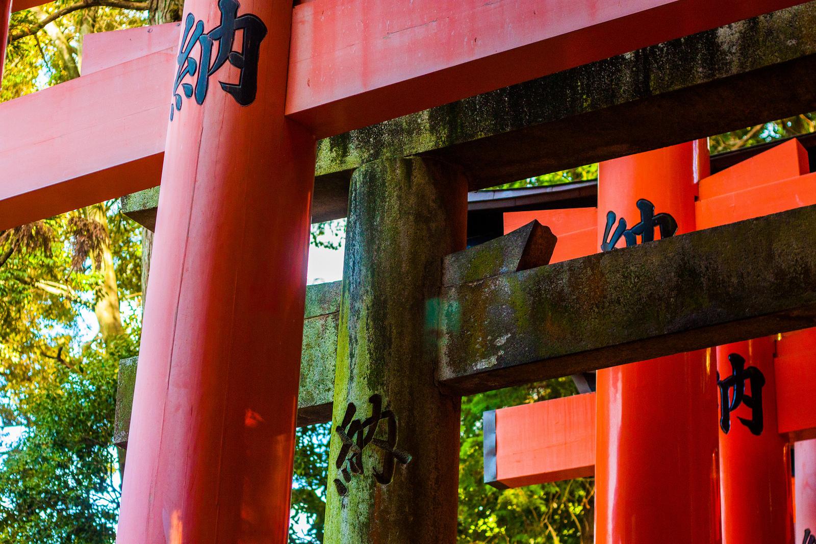 30371684505_a96335863c_h.jpgThe Ultimate Walking Tour of Kyoto's Incredible Fushimi Inari Shrine's 10,000 torii gates