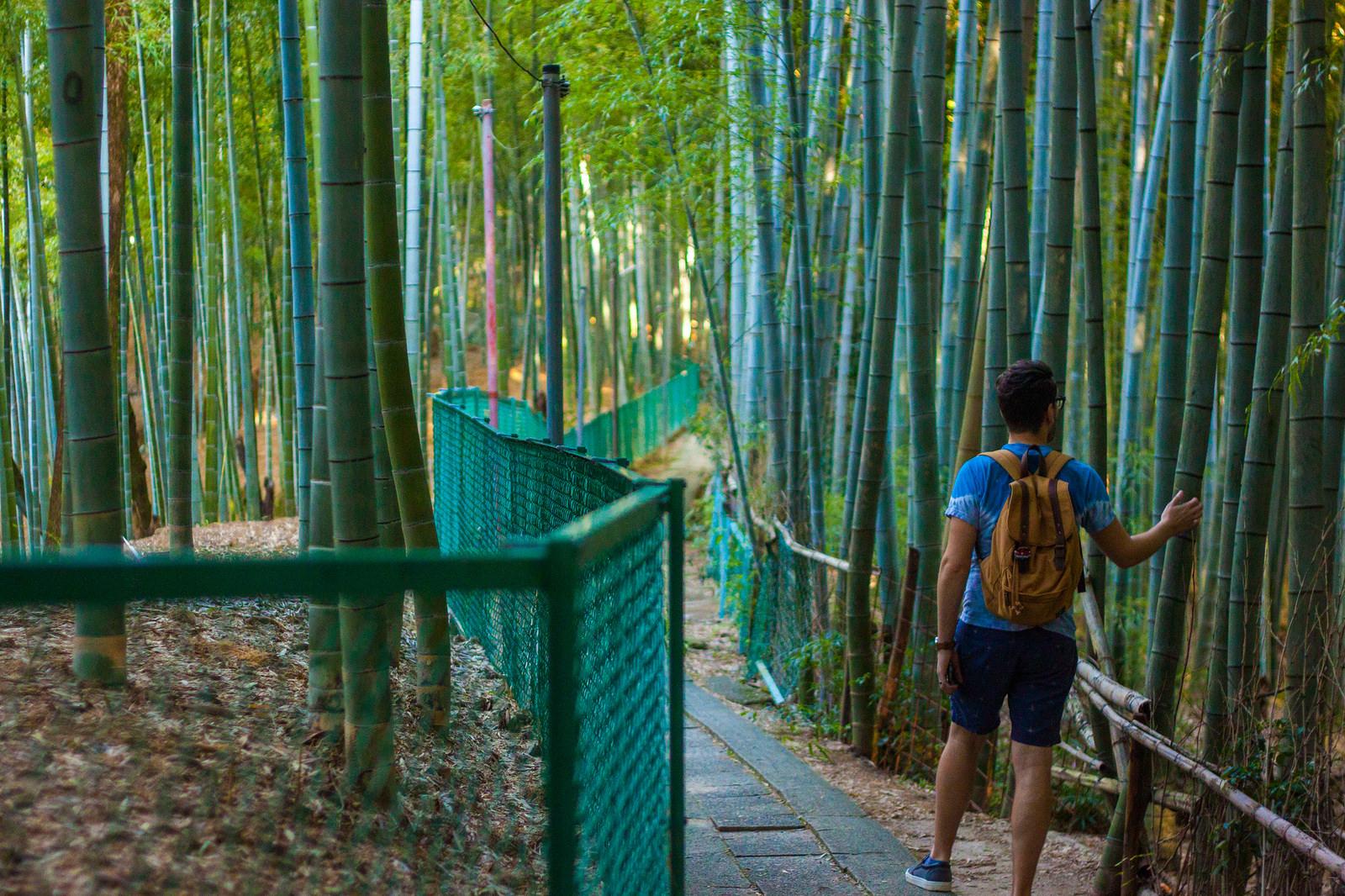 30372611765_03b2fe2ee9_h.jpgThe Ultimate Walking Tour of Kyoto's Incredible Fushimi Inari Shrine's 10,000 torii gates