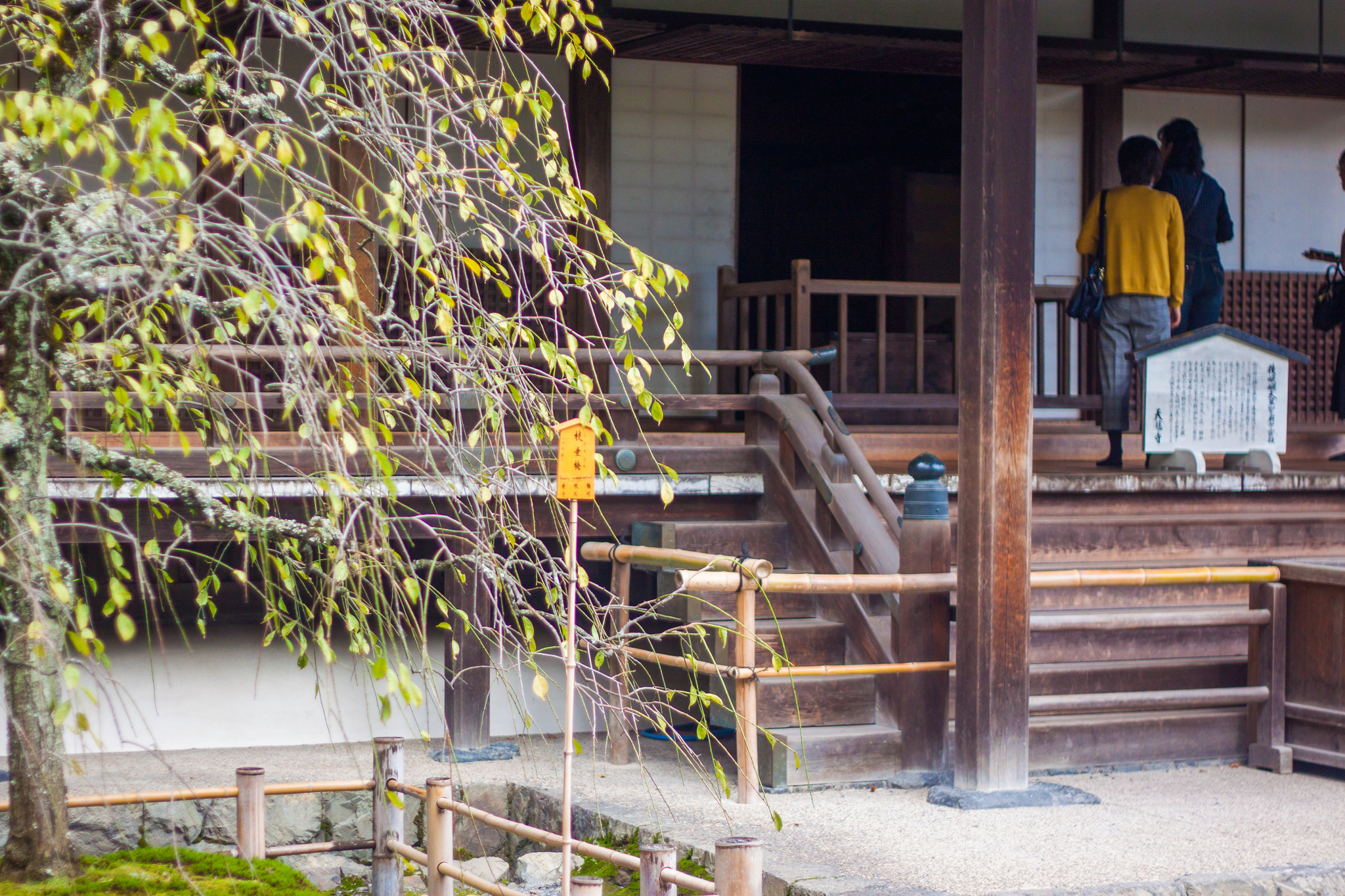 30074436140_6f4f0ebbcc_k.jpgA Guide to Finding your Zen in the Peaceful and Serene Gardens of Tenryu-ji Temple Arashiyama