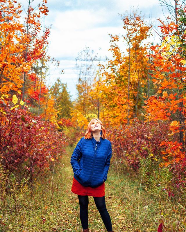 Basking in the glory of Ontario's Autumn 🧡🍁🧡