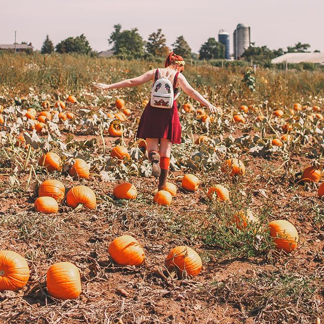 Pumpkin Patching 🎃🎃🎃 counting down the days till our trip to Mexico City and loving looking at all the amazing Day of the Dead celebration photos coming in! Where would be your favourite place to travel on Halloween?