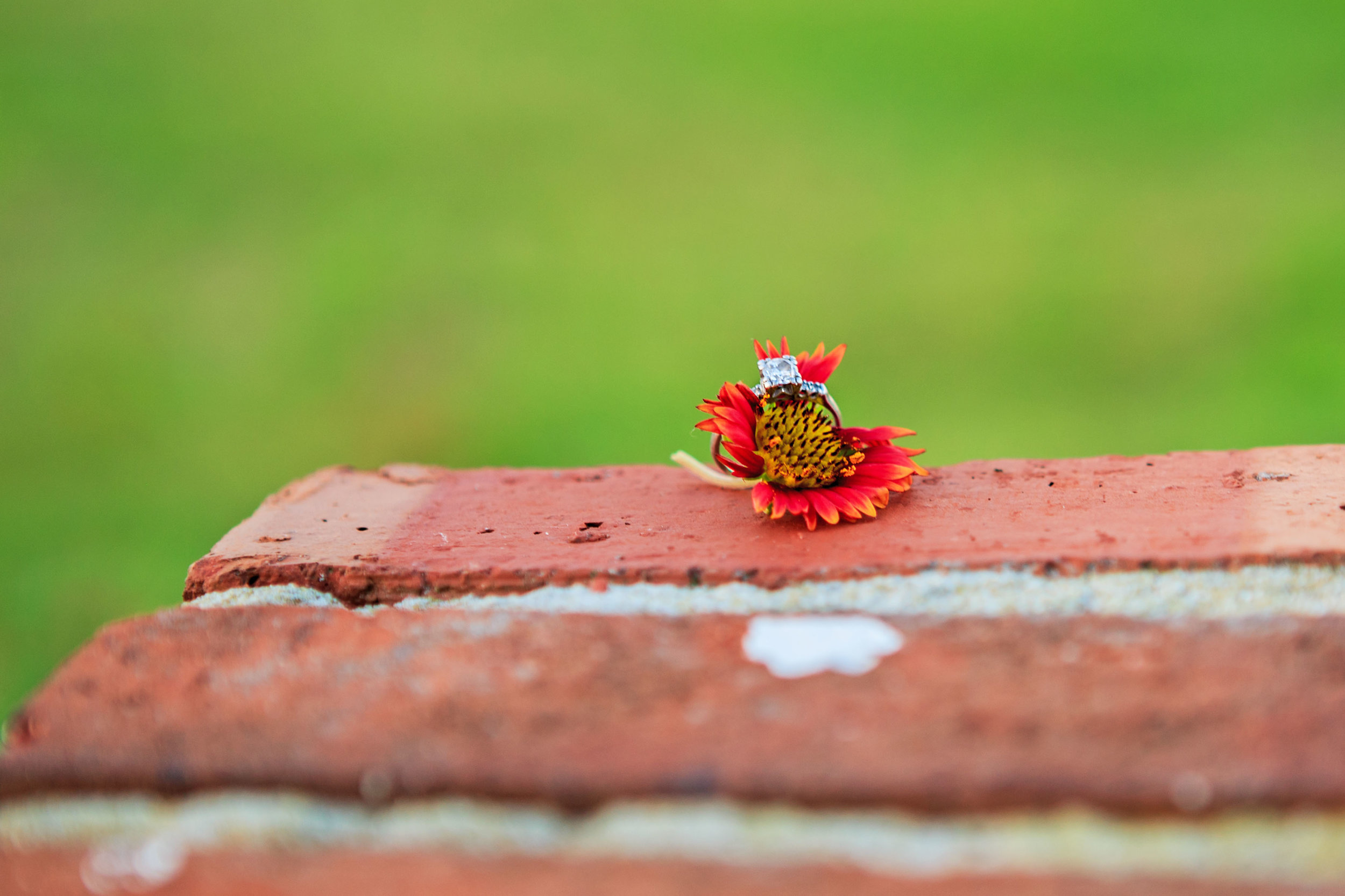 Fort_Fisher_Photographer_Engagement_Tiffany_Abruzzo_Photography_49.jpg