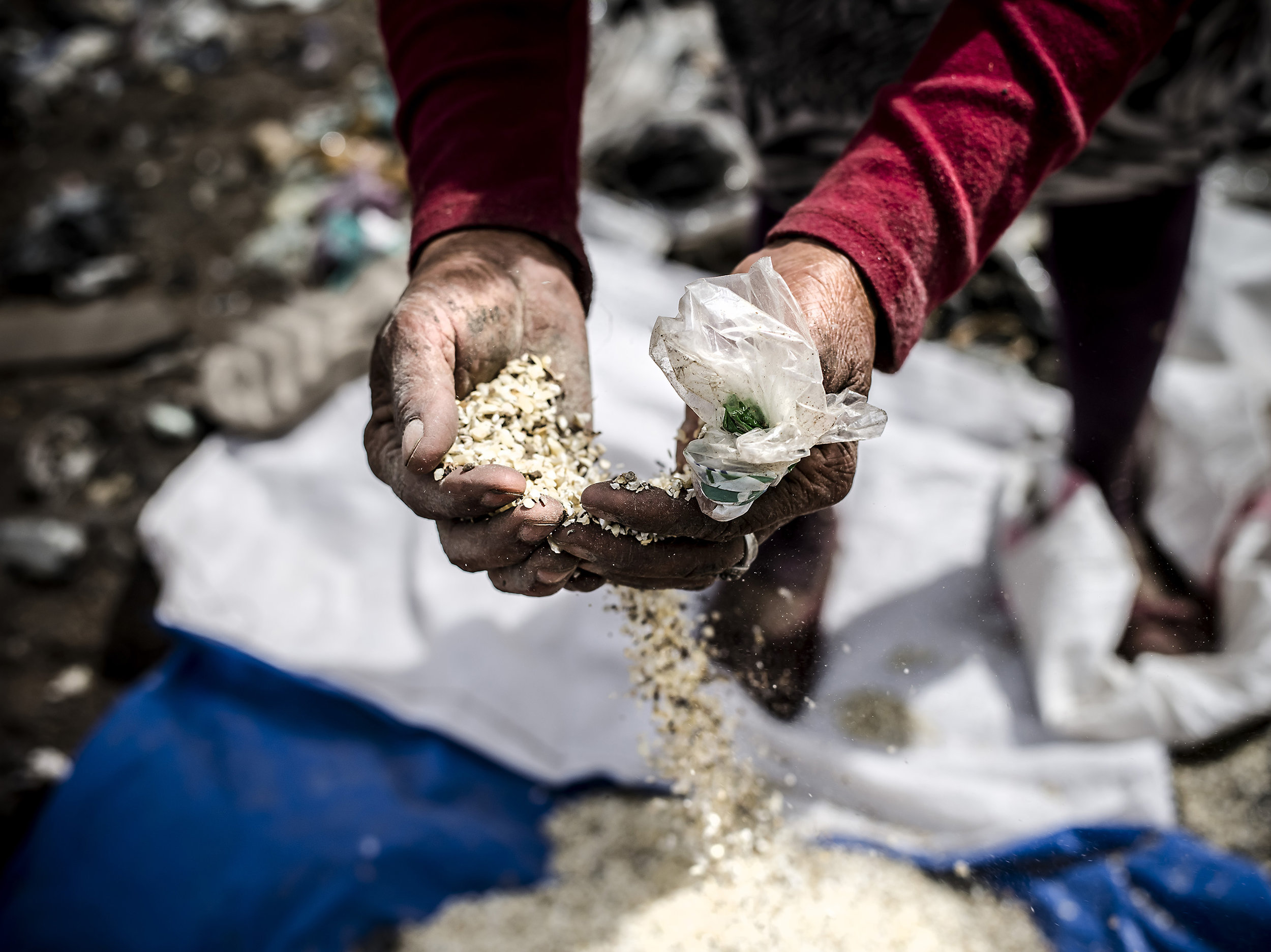 A woman sifts through corn meal from the garbage to feed to her pigs.