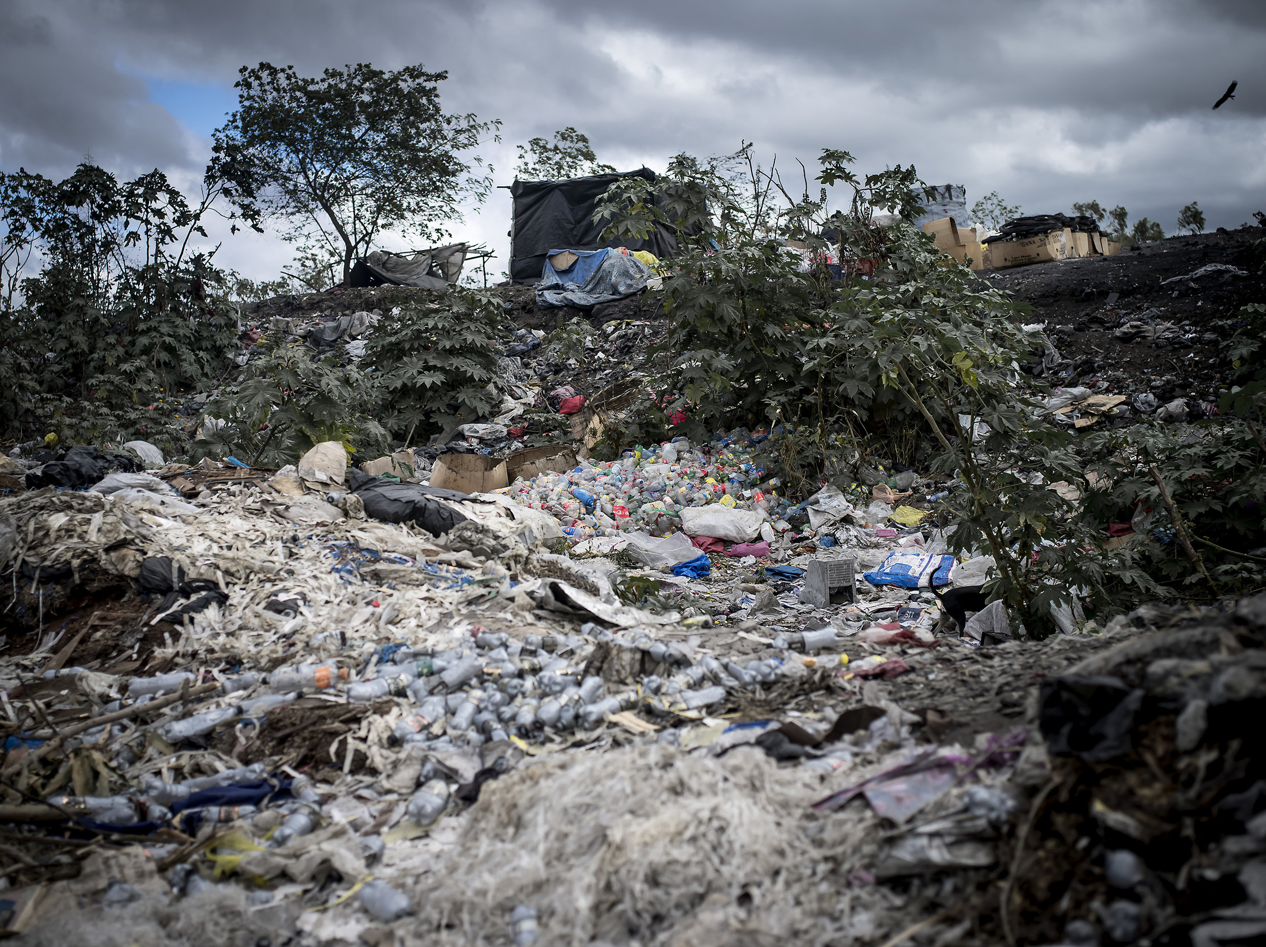 People make sorting stations and sometimes homes alongside the dump so they can be first alerted about incoming trash.