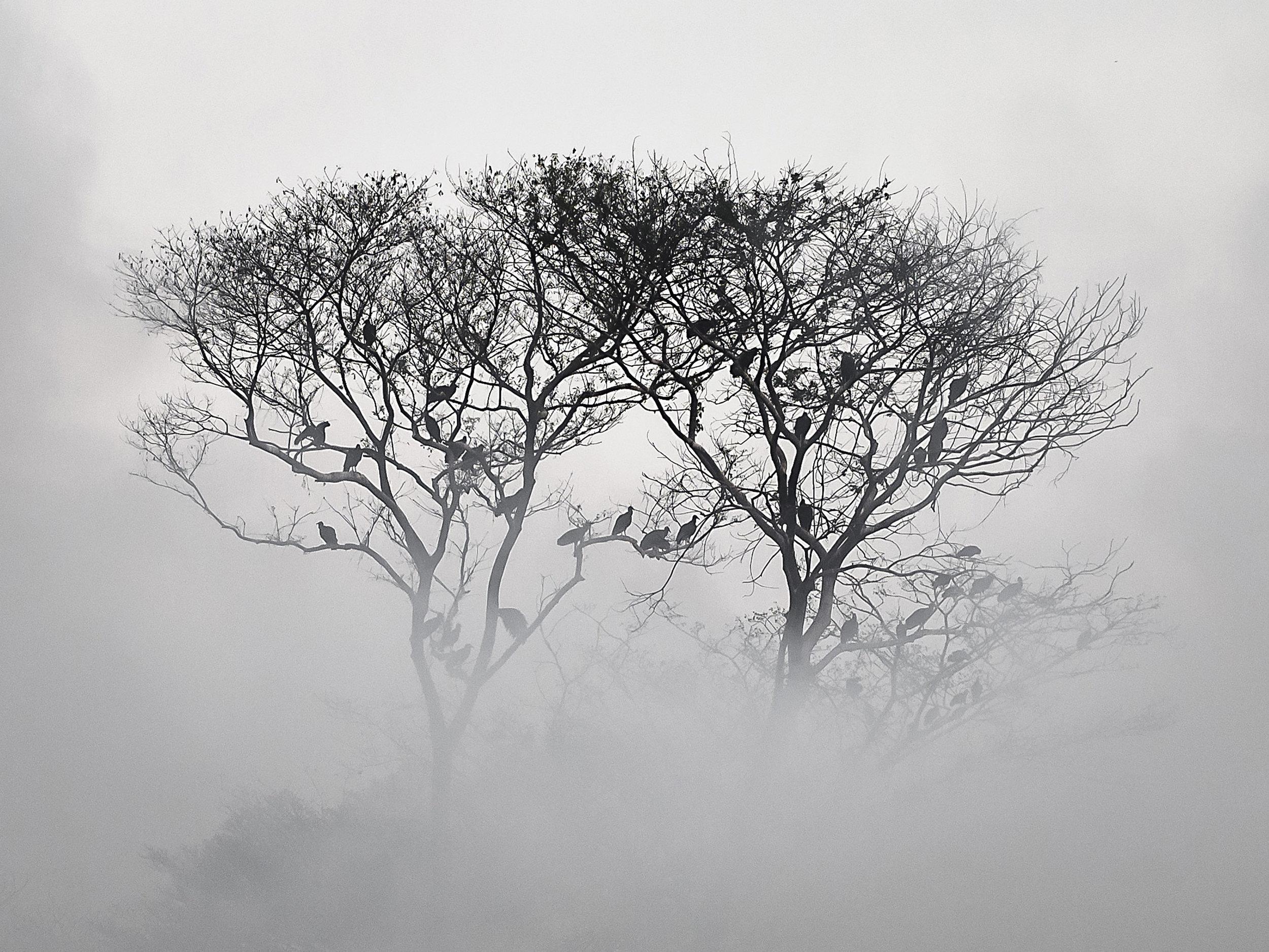 Escuintla, Guatemala