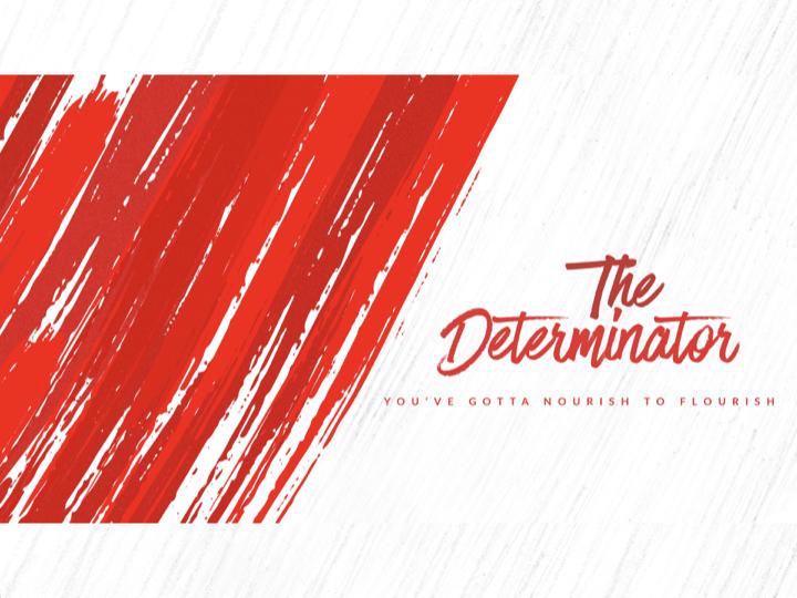 The Determinator.001.jpeg