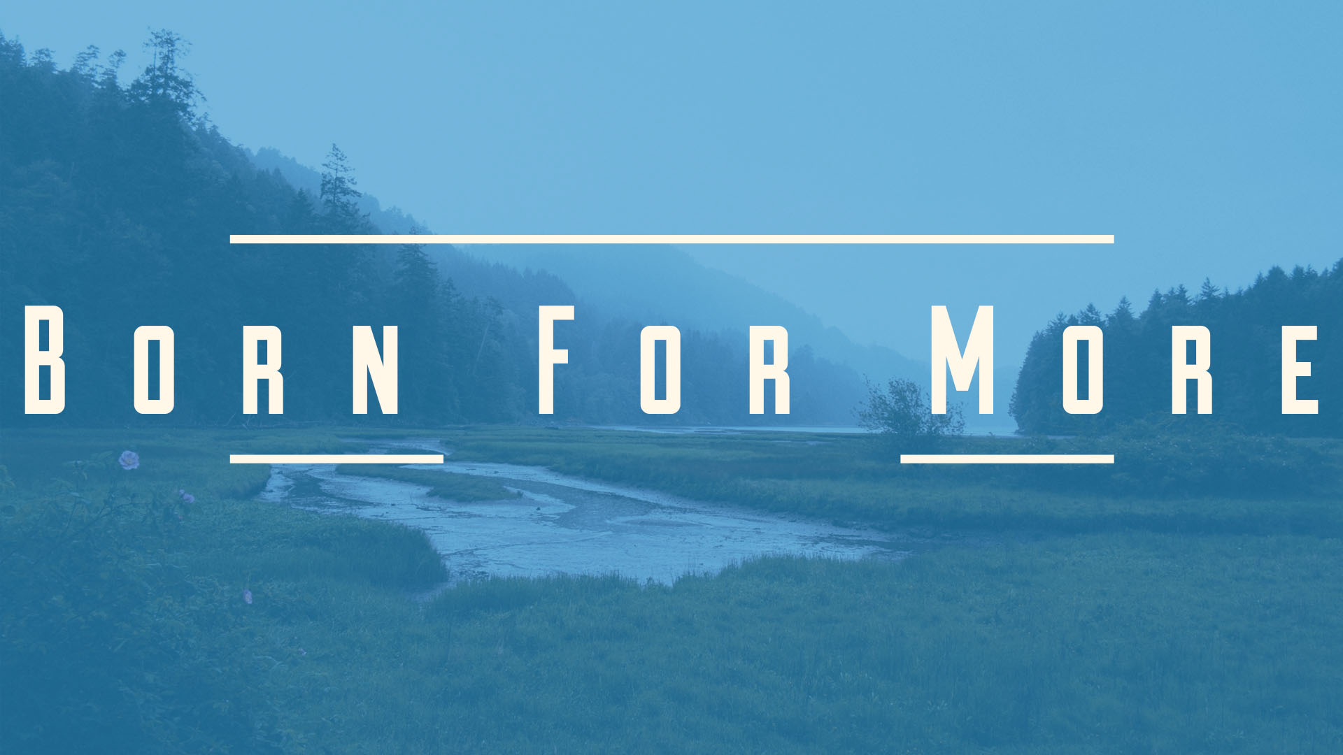 bornformore2.jpg